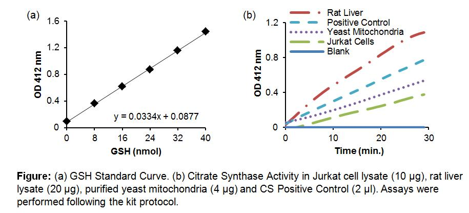 Citrate Synthase Activity Assay