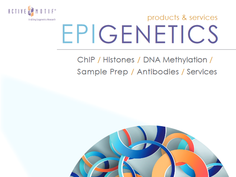 Download Epigenetics Research brochure