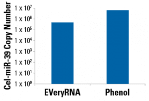 EVeryRNA delivers similar amounts of RNA as phenol-based methods