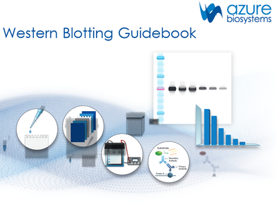 Download: Western blotting guidebook