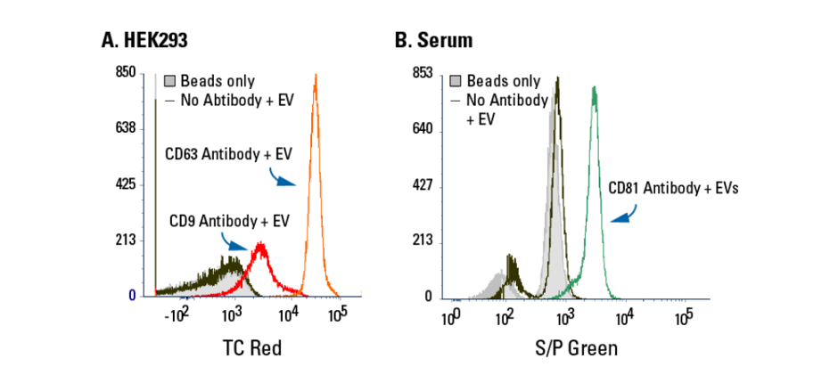 Exo-Flow 2.0 delivers undetectable background binding when analysed using flow cytometry