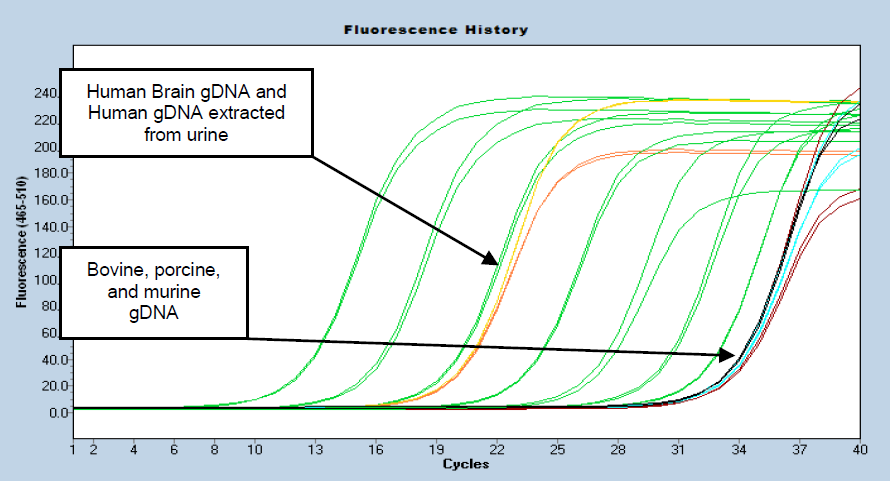 The Femto DNA Quantification Kits detect & quantify DNA with high specificity