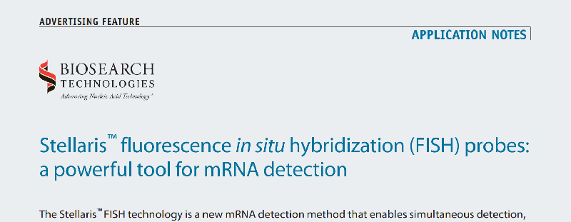 Download: mRNA detection application note