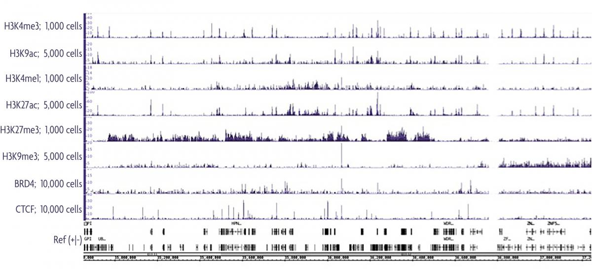The Low Cell ChIP-Seq kit produces nice ChIP peaks for both robust and low abundance target proteins