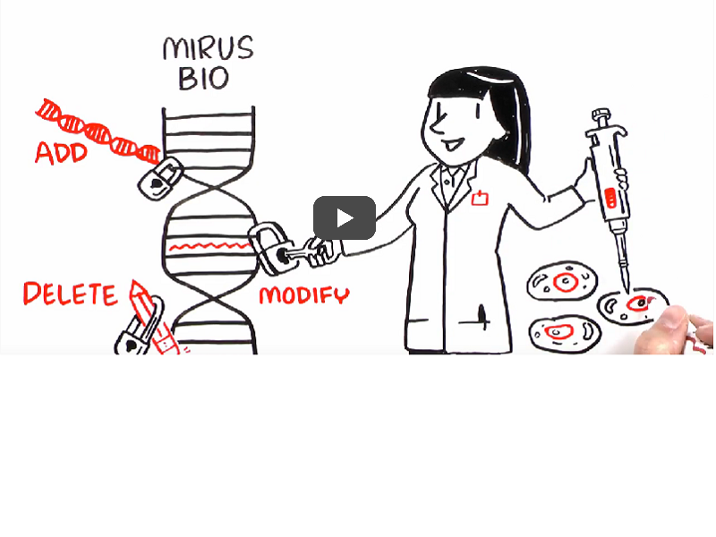Video: Simplicity of virus-mediated gene delivery