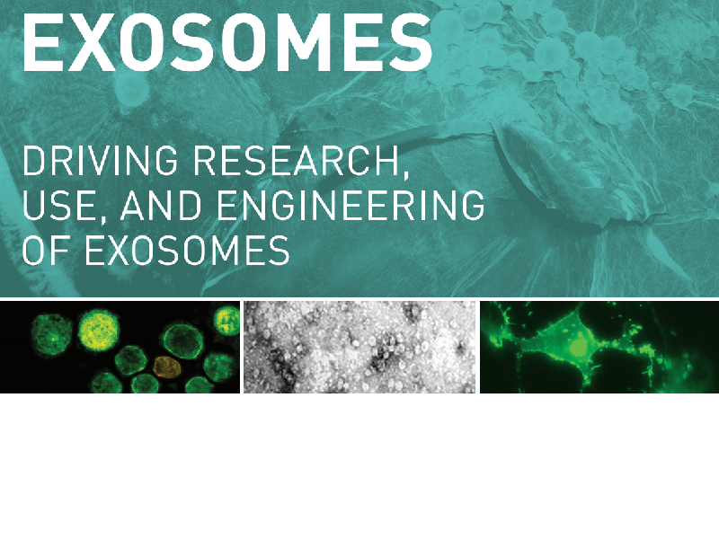 Download: SBI Exosomes brochure