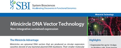 Download: SBI minicirl DNA vector technology