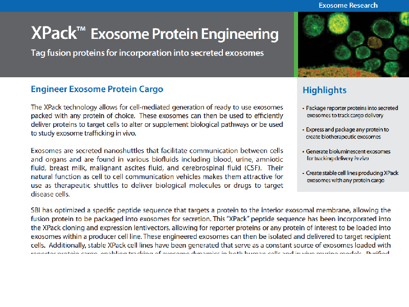 Download: XPack exosome protein engineering flyer