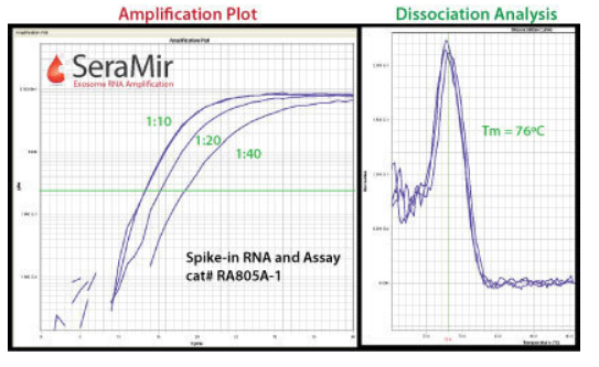 SeraMir: Use the SeraMir spike-in RNA control in a qPCR assay to control for exoRNA recovery, tailing, and cDNA synthesis.