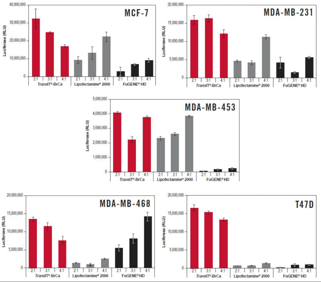 TransIT®-BrCa Transfection Reagent Exhibits Higher Luciferase Expression in Breast Cancer Cells Compared to Other Transfection Reagents