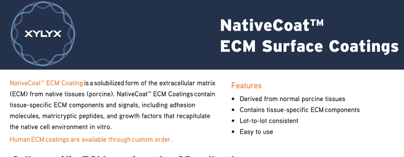 Download: NativeCoat flyer